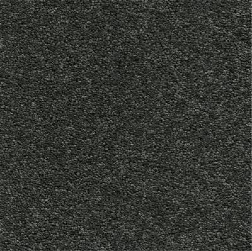 ambiant-oakland-carbon-0246