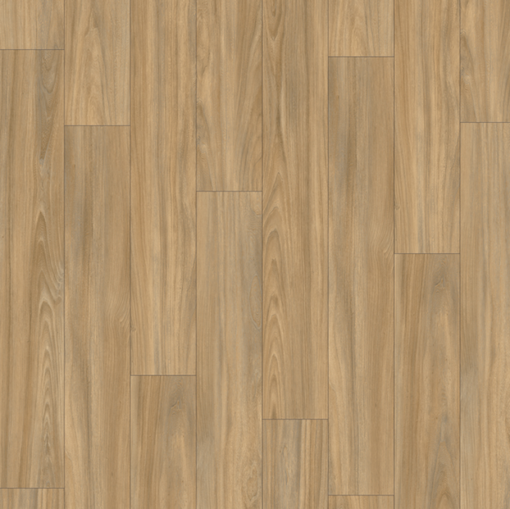 MODULEO | TRANSFORM BALTIC MAPLE 28230
